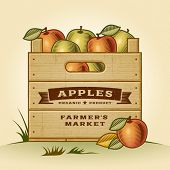 image of crate  - Retro crate of apples - JPG