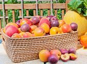 pic of apricot  - Pile of colorful summer fruits  - JPG