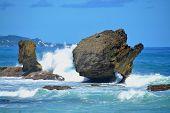 pic of greater antilles  - beautiful bay of Bathsheba at eastcoast of Barbados - JPG