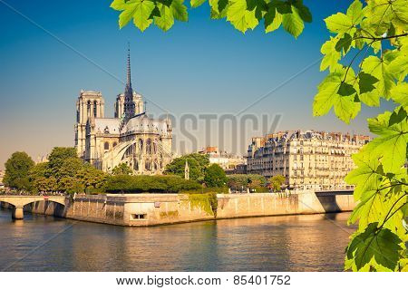 Notre Dame de Paris in Paris, France