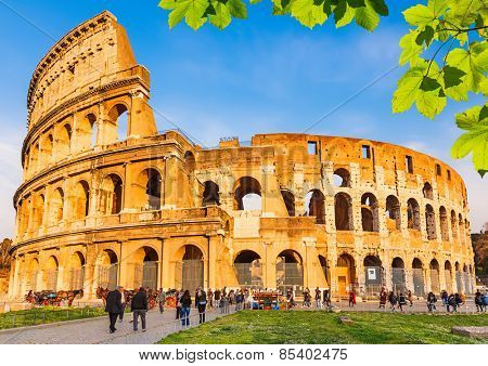 Colosseum with green leaves in Rome, Italy