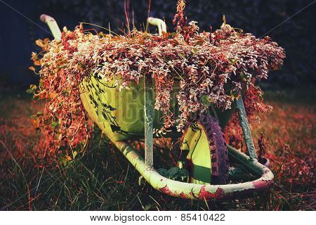 green rustic wheelbarrow full of colorful flowers on a grass lawn red variant