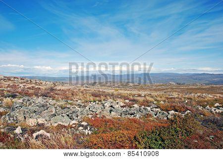 Yukon Alaska landscape