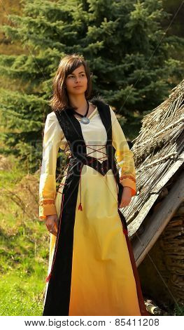 beautiful girl in a historical costume posing in a wild landscape with a wooden log
