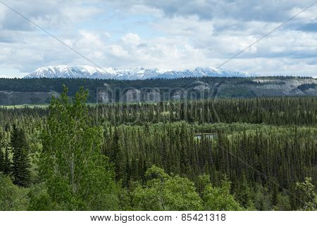 The Copper River Valley