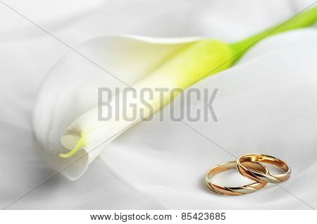 White  Flower And Wedding Rings