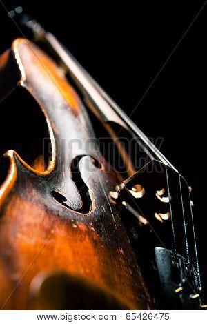 Vintage violin on black background