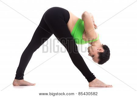Asana For Shoulders And Legs Stretching, Parsvottanasana