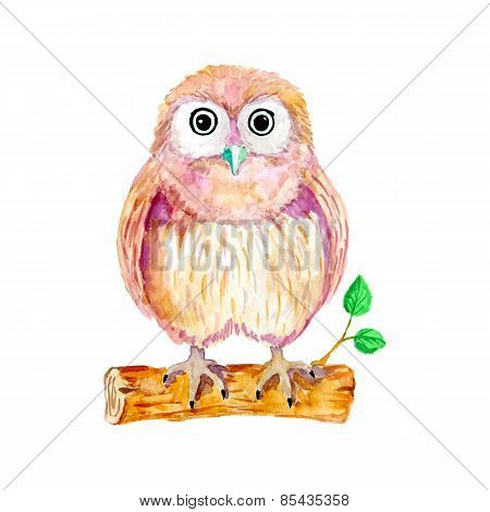 Watercolor cartoon owl sitting on the branch