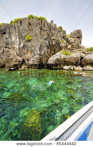 Asia In The  Kho Phangan Isles Bay   Rocks   Swimming