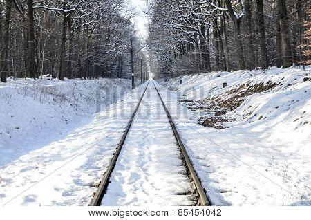 Winter Landscape Showing A Railroad Track