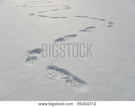 Footprints In Deep Snow