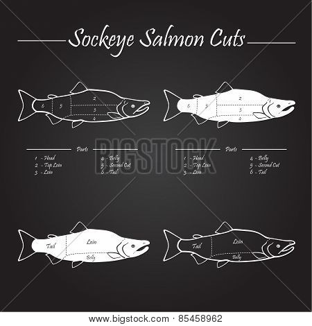 Sockeye Salmon Cuts Diagram