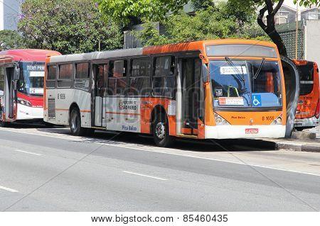Sao Paulo City Bus
