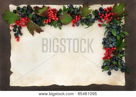 Autumn fruit and nut border on parchment paper forming a background.