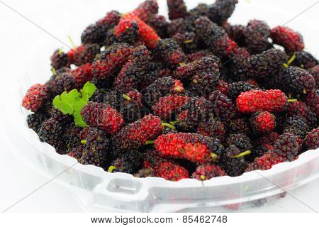 Organic Mulberry In Plate