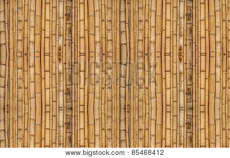 Bamboo Background In Vertical Alignment