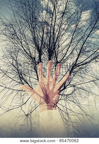 Abstract Environment Concept Photo Collage, Tree And Hand