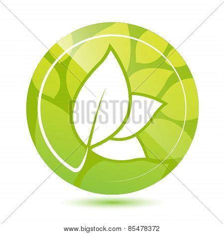 vector round green leaves icon, button