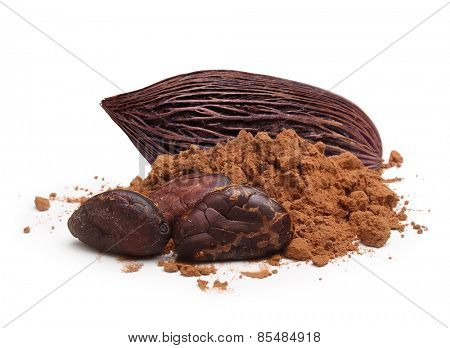 Cacao beans and powder isolated on white background
