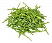 image of marshes  - Fresh marsh samphire a coastal plant with vibrant green stalks and a crisp salty taste isolated on a white background - JPG