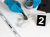 pic of criminology  - Disclosure of forensic evidence using fingerprint powders. ** Note: Visible grain at 100%, best at smaller sizes - JPG