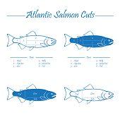 stock photo of redfish  - Norwegian Atlantic salmon cutting diagram illustration blue on white - JPG