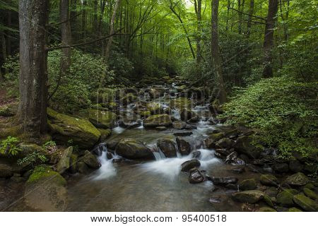 Water cascading over rocks in lush forest in South Carolina