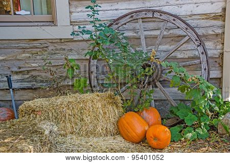 Pumpkins, Hay, And A Wagon Wheel