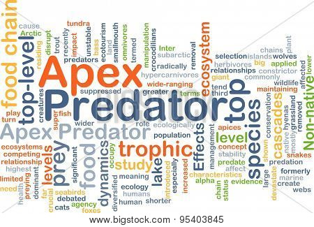 Background concept wordcloud illustration of apex predator