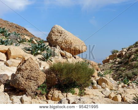 Yellow rock on the hill in desert in spring