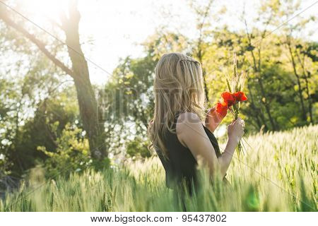 Young beautiful woman harvesting poppy