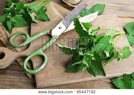 Leaves of lemon balm with scissors on wooden cutting board, closeup