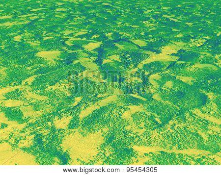 Gradiented green-yellow beach sand background