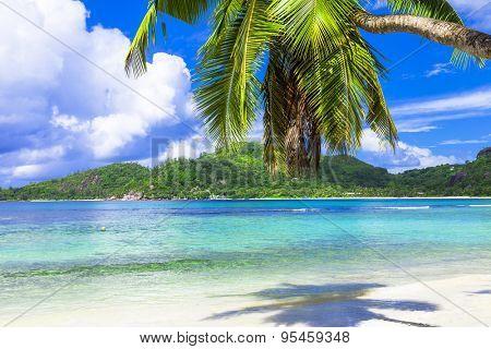 Tropical beach scenery , Seychelles island. Mahe