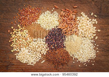 gluten free grains (buckwheat, amaranth, brown rice, millet, sorghum, teff,  red, black and white quinoa)  on rustic wood - top view