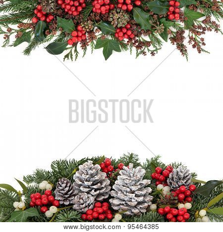 Christmas and winter flora with holly and red berries, mistletoe, ivy, snow covered pine cones, fir and traditional greenery over white background.