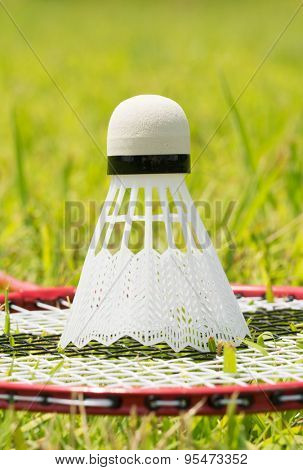 Shuttlecock on a badminton racquet in summer grass - concept of relaxing summer sports