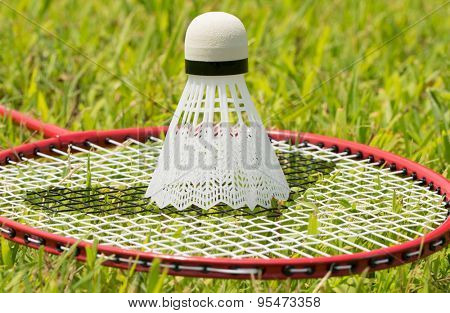 Shuttlecock on badminton racquet in grass