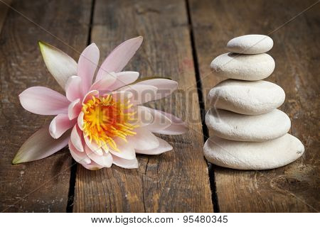 Pink waterlily and stacked pebbles on rustic wood