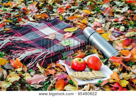 A Convenient Blanket To Relax In The Woods And Breakfast.