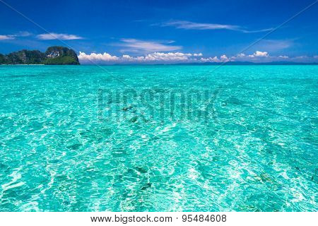 Sunny Waters Exotic Getaway
