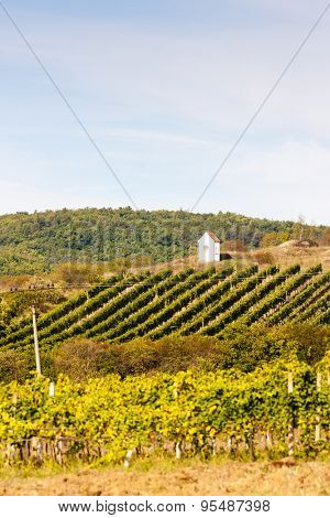 God's torture near Hnanice with autumnal vineyard, Southern Moravia, Czech Republic