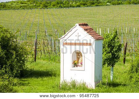 God's torture near Hnanice with spring vineyard, Southern Moravia, Czech Republic