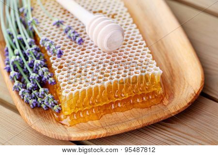 honeycomb with lavender flowers - sweet food