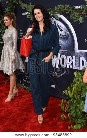 LOS ANGELES - JUN 09:  Angie Harmon arrives to the