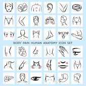 foto of human stomach  - Body pain human anatomy icons - JPG