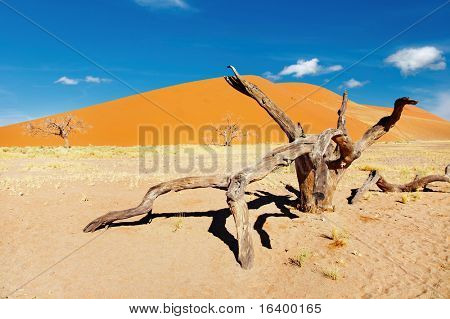 Desierto del Namib, Sossusvlei, Namibia