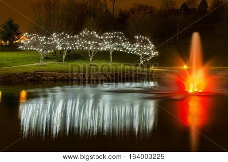 View of Christmas decorated trees around a pond. The pond also has a fountain with lights