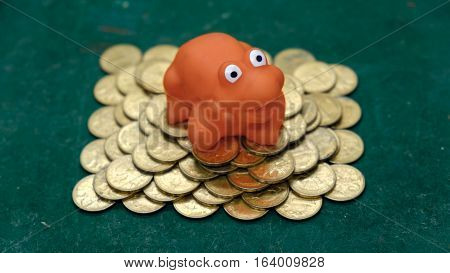 the money frog. red frog on green